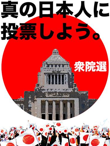 shugiin senkyo 2014.jpg